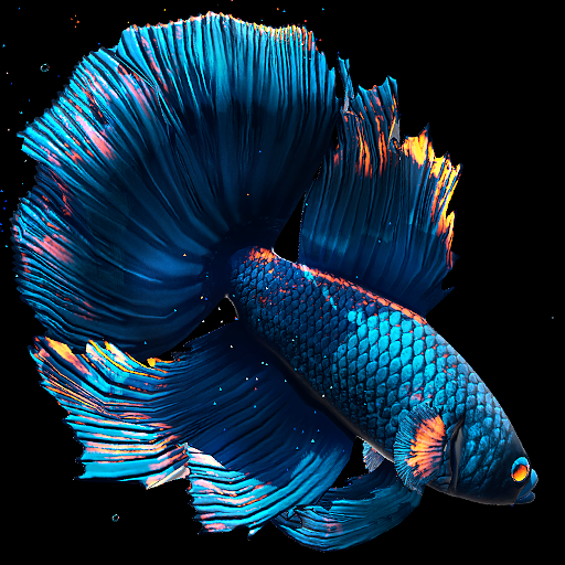 Betta Fish Live Wallpaper Free 1 3 5 Unlimited Apk For Android